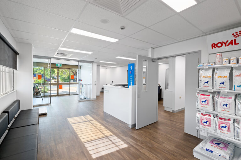 Office Fitouts - Goodna Veterinary Clinic
